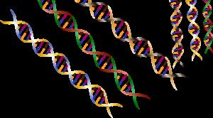 Jede virtuelle Messe hat eine eigene DNA...